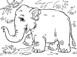 דף צביעה פיל אסייאתי